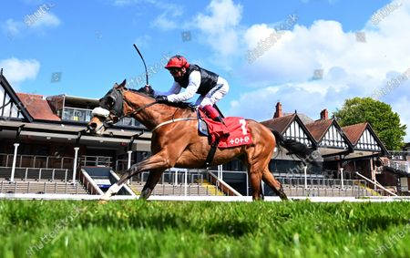 Falcon Eight (Frankie Dettori) wins The tote+ Chester Cup Handicap Stakes.Photo © Hugh Routledge.