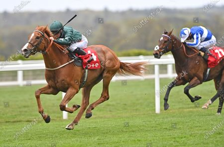 Stock Picture of Louganini (Hollie Doyle) wins The tote+ Exclusively At tote.co.uk Handicap Stakes from Group One Power (Silvestre De Sousa). Photo © Hugh Routledge