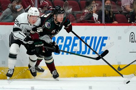 Arizona Coyotes left wing John Hayden (15) battles with Los Angeles Kings center Jaret Anderson-Dolan (28) during the third period of an NHL hockey game, in Glendale, Ariz. The Kings defeated the Coyotes 4-2