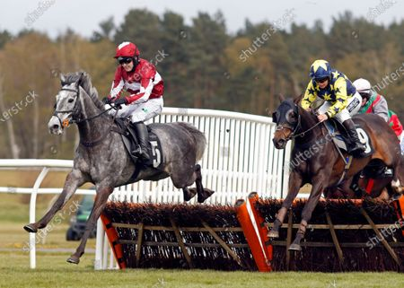 Stock Image of AN TAILLIUR (Jonjo O'Neill jr) beats SEAPOINT (right) in The Unibet 3 Uniboosts A Day Handicap Hurdle Market Rasen