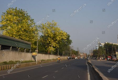 Amaltas trees near St. Michael's School  on May 7, 2021 in Patna, India.