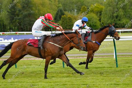 Francky Du Berlais and James Bowen catch leader Fortified Bay and Darragh O'Keeffe after the last to win the Pertemps Network Intermediate Handicap Chase at Haydock.