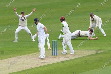 Craig Overton of Somerset catches the ball after it had deflected off the pads of Joe Weatherley during the LV= Insurance County Championship match between Hampshire County Cricket Club and Somerset County Cricket Club at the Ageas Bowl, Southampton