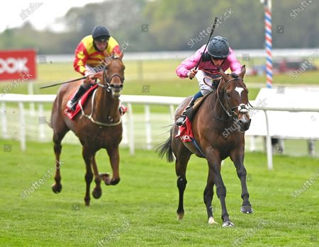 Editorial image of Horse Racing from York Racecourse, UK - 14 May 2021