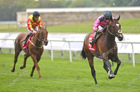 Editorial picture of Horse Racing from York Racecourse, UK - 14 May 2021