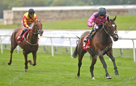Stock Photo of Spanish Mission (William Buick) wins The Matchbook Yorkshire Cup Stakes.Photo © Hugh Routledge