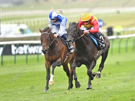 Stock Picture of (R) John Leeper (William Buick) wins The Betway Fairway Stakes from (L) Tasman Bay (David Probert).Photo © Hugh Routledge.