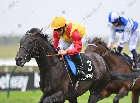 Stock Image of (L) John Leeper (William Buick) wins The Betway Fairway Stakes from (R) Tasman Bay (David Probert).Photo © Hugh Routledge.