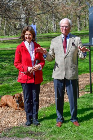 "Stock Picture of Queen Silvia, with the royal dog Brandie, and King Carl Gustaf of Sweden inaugurate glass artist Bertil Vallien's exhibition ""Gatekeeper"" at Solliden Palace on Oland, Sweden, on May 11, 2021."