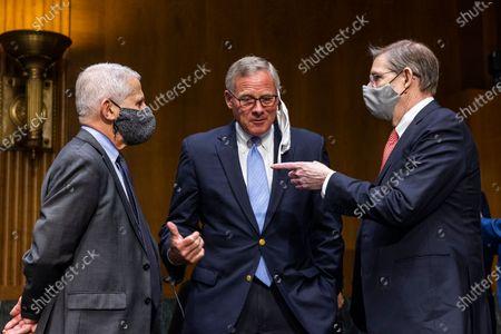 Editorial photo of Fauci, Walensky testify before Senate on COVID-19 update, Washington, USA - 11 May 2021