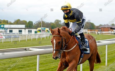 Stock Image of PROJECT DANTE (Graham Lee) winner of The British Stallion Studs EBF Novice Stakes York