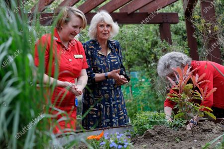 Camilla, Duchess of Cornwall helps to plant a shrub with Kate Green, right, and Michelle Johnson Director of Nursing, left, as she visits the hospital gardens during a visit on International Nurse Day to Whittington Hospital in London