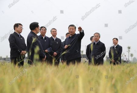 Chinese President Xi Jinping, also general secretary of the Communist Party of China Central Committee and chairman of the Central Military Commission, stops by wheat fields to check crop growth and learns about progress in summer grain production while inspecting the South-to-North Water Diversion Project in Xichuan County, Nanyang, Central China's Henan Province, May 13, 2021.