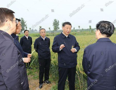 Editorial photo of China Henan Nanyang Xi Jinping Inspection - 13 May 2021