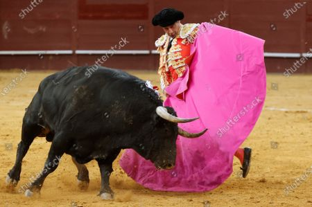Stock Photo of Spanish bullfighter Enrique Ponce in action during a bullfight on occasion of the St Isidro Fair held at Vistalegre bullfighting arena, in Madrid, central Spain, 14 May 2021.