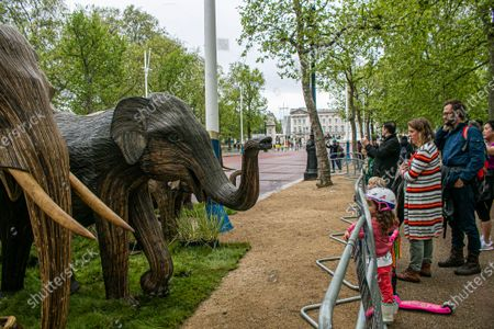 125 life-size elephant sculptures are displayed in The Mall as part of CoExistence, an environmental art campaign produced by Elephant Family a charity that works to save endangered Asian wildlife from extinction. The charity was founded by The Duchess of Cornwall late brother, Mark Shand