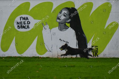 A mural of Ariana Grande by the Irish artist Emmalene Blake, located in South Dublin. This is the latest work, a part of the 'Stay At Home' serie, encouraging people to stick to social distancing. On Monday, November 16, 2020, in Dublin, Ireland.