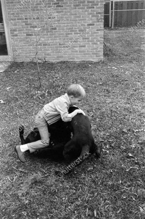 Kid playing with dogs, United States, March 1969.