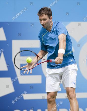 Stock Picture of Alex Bogdanovic