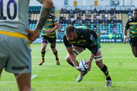 Tom Wood of Northampton Saints latches onto a loose ball to score a try
