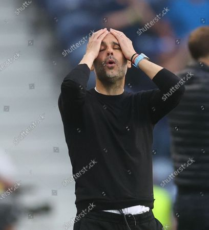 Stock Photo of Manager Josep Guardiola of Manchester City reacts during the UEFA Champions League final between Manchester City and Chelsea FC in Porto, Portugal, 29 May 2021.