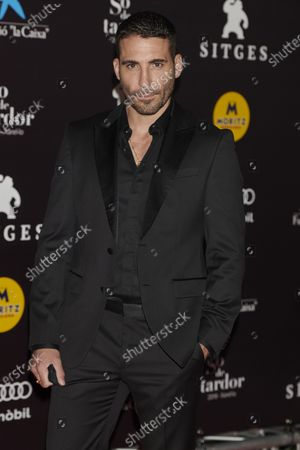 Stock Image of Miguel angel Silvestre attends the '30 Monedas' Sitges film festival Red Carpet at Gran Melia Hotel in Sitges, Spain, on October 11, 2020.