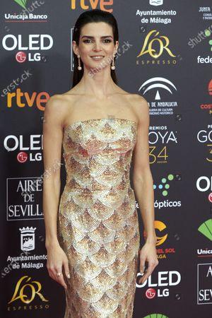 Clara Lago attends the 34th 'Goya' Cinema Awards 2020 Red Carpet photocall at Jose Maria Martin Carpena Sports Palace in Malaga, Spain on Jan 25, 2020
