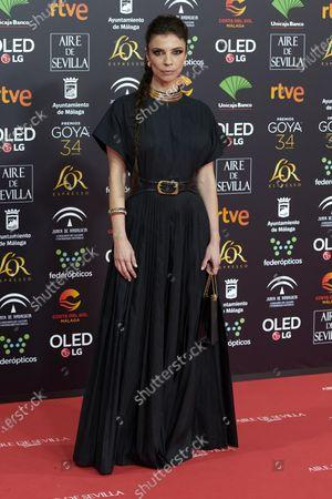 Maribel Verdu attends the 34th 'Goya' Cinema Awards 2020 Red Carpet photocall at Jose Maria Martin Carpena Sports Palace in Malaga, Spain on Jan 25, 2020