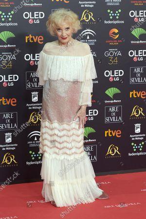 Marisa Paredes attends the 34th 'Goya' Cinema Awards 2020 Red Carpet photocall at Jose Maria Martin Carpena Sports Palace in Malaga, Spain on Jan 25, 2020