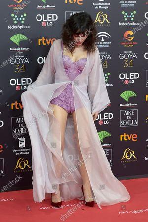 Nadia de Santiago attends the 34th 'Goya' Cinema Awards 2020 Red Carpet photocall at Jose Maria Martin Carpena Sports Palace in Malaga, Spain on Jan 25, 2020