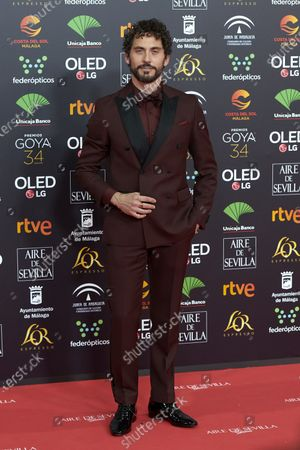 Paco Leon attends the 34th 'Goya' Cinema Awards 2020 Red Carpet photocall at Jose Maria Martin Carpena Sports Palace in Malaga, Spain on Jan 25, 2020