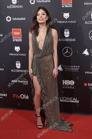Ana del Castillo attends the 'FEROZ' awards 2020 Red Carpet photocall at Teatro Auditorio Ciudad de Alcobendas in Madrid, Spain on Jan 16, 2020