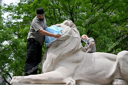 Stock Image of Workers place a large face mask of the lion statues outside the New York Public Library Stephen A. Schwarzman Building in New York.