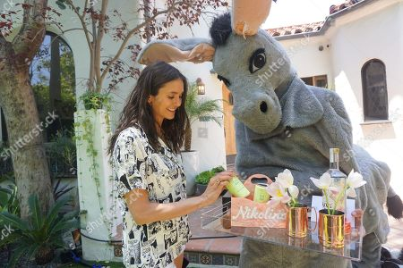 Kate Hudson sent a mule to gift her celebrity friends her King St. Vodka and CANN Social Tonics, with a custom Moscow Mule Edie Parker tray kit to celebrate the beginning of summer over the holiday weekend. Pictured: Nina Dobrev