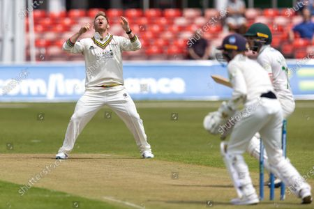 Stock Picture of Glenn Phillips nearly has Sam Evans caught during Day 1 of the LV= Insurance County Championship match between Leicestershire County Cricket Club and Gloucestershire County Cricket Club at the Uptonsteel County Ground, Leicester