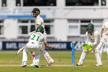 Sam Evans fields a ball at short leg during the 3rd day of the  LV= Insurance County Championship match between Leicestershire County Cricket Club and Gloucestershire County Cricket Club at the Uptonsteel County Ground, Leicester