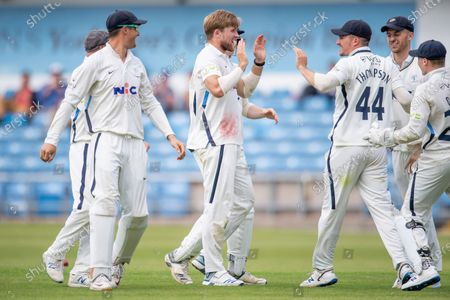 Yorkshire's David Willey celebrates dismissing Sussex's Jack Carson.