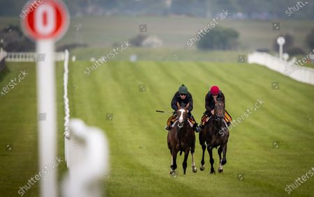"""Stock Photo of Some of the leading contenders for this year's Dubai Duty Free Irish Derby exercised on the famous Curragh race track over the weekend as part of their preparation for the €1 million show piece, which takes place on Saturday 26th June. Aidan O'Brien was represented by High Definition, who landed the Group 2 Alan Smurfit Memorial Beresford Stakes as a two year old. The son of Galileo looked in very good order as he worked over 10 furlongs with Wayne Lordan in the saddle. Other Dubai Duty Free Irish Derby entries working on the track included the Joseph O'Brien trained Thunder Moon (Declan McDonagh) and Toshizou (Shane Crosse), while the Luke Comer trained pair of Seattle Creek and Seattle Sound were both put through their paces. Pat Keogh, Chief Executive of The Curragh, commented, """"The build up to the Dubai Duty Free Irish Derby has well and truly started and with the support of Dubai Duty Free, we were delighted to have the opportunity to invite all trainers with entries in the race to use the track over the weekend."""". The Dubai Duty Free Irish Derby Festival takes place from Friday 25th to Sunday 27th June with Saturday featuring the Dubai Duty Free Irish Derby at 3.45pm. Pictured are Michael Hussey on Carlisle Bay and Wayne Lordan on High Definition"""