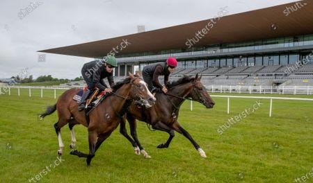 Editorial picture of Contenders prepare for Dubai Duty Free Irish Derby with racecourse gallop, The Curragh, Co. Kildare - 06 Jun 2021