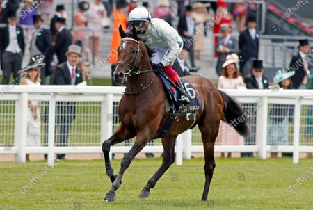 PALACE PIER (Frankie Dettori) winner of The Queen Anne Stakes Royal Ascot