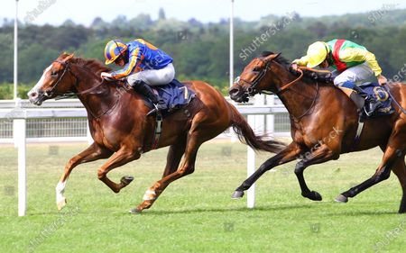 Love and Ryan Moore win the Prince Of Wales's Stakes at Royal Ascot from Audarya. 16/6/2021 Pic Steve Davies