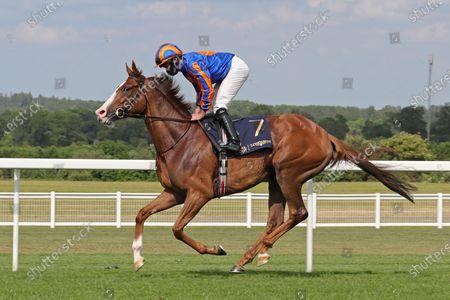 Love (Ryan Moore) wins The Prince of Wales's Stakes.Photo Debbie Burt