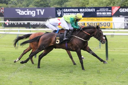 Stock Photo of Steel An Icon (5) ridden by Rose Dawes and trained by Mick Channon winning The Racing TV Extra Hands N Heels Apprentice Handicap over 1m 6f (£6,500) at Nottingham Racecourse, Nottingham