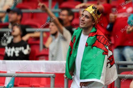A Wales fan inside the stadium
