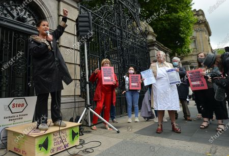 Editorial image of Protest In Dublin Over Ownership Of New NMH, Ireland - 26 Jun 2021
