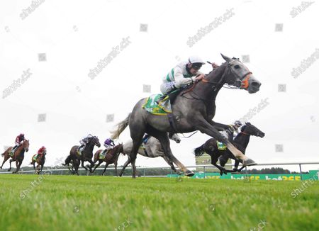 Stock Image of Alpinista and Luke Morris win the Bet365 Lancashire Oaks at Haydock from Lady Hayes and Cabaletta.