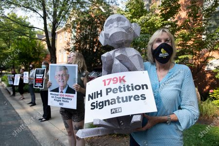 Editorial picture of People for the Ethical Treatment of Animals (PETA) protest outside the home of National Institutes of Health (NIH) Director Francis Collins, Chevy Chase, USA - 04 Jul 2021
