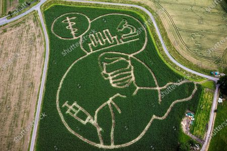 Stock Picture of An aerial picture taken with a drone shows shows a maize that depicts motifs related to the Covid-19 crisis, in a corn field at the Luenemann farm in Selm near Luenen, Germany, 09 July 2021. Every year, farmer Benedikt Luenemann creates a labyrinth in his three hectares maize field with a motif on current events or topics.