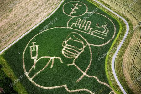An aerial picture taken with a drone shows shows a maize that depicts motifs related to the Covid-19 crisis, in a corn field at the Luenemann farm in Selm near Luenen, Germany, 09 July 2021. Every year, farmer Benedikt Luenemann creates a labyrinth in his three hectares maize field with a motif on current events or topics.