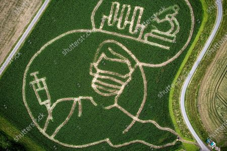 Stock Image of An aerial picture taken with a drone shows shows a maize that depicts motifs related to the Covid-19 crisis, in a corn field at the Luenemann farm in Selm near Luenen, Germany, 09 July 2021. Every year, farmer Benedikt Luenemann creates a labyrinth in his three hectares maize field with a motif on current events or topics.